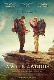 Un paseo por el bosque
