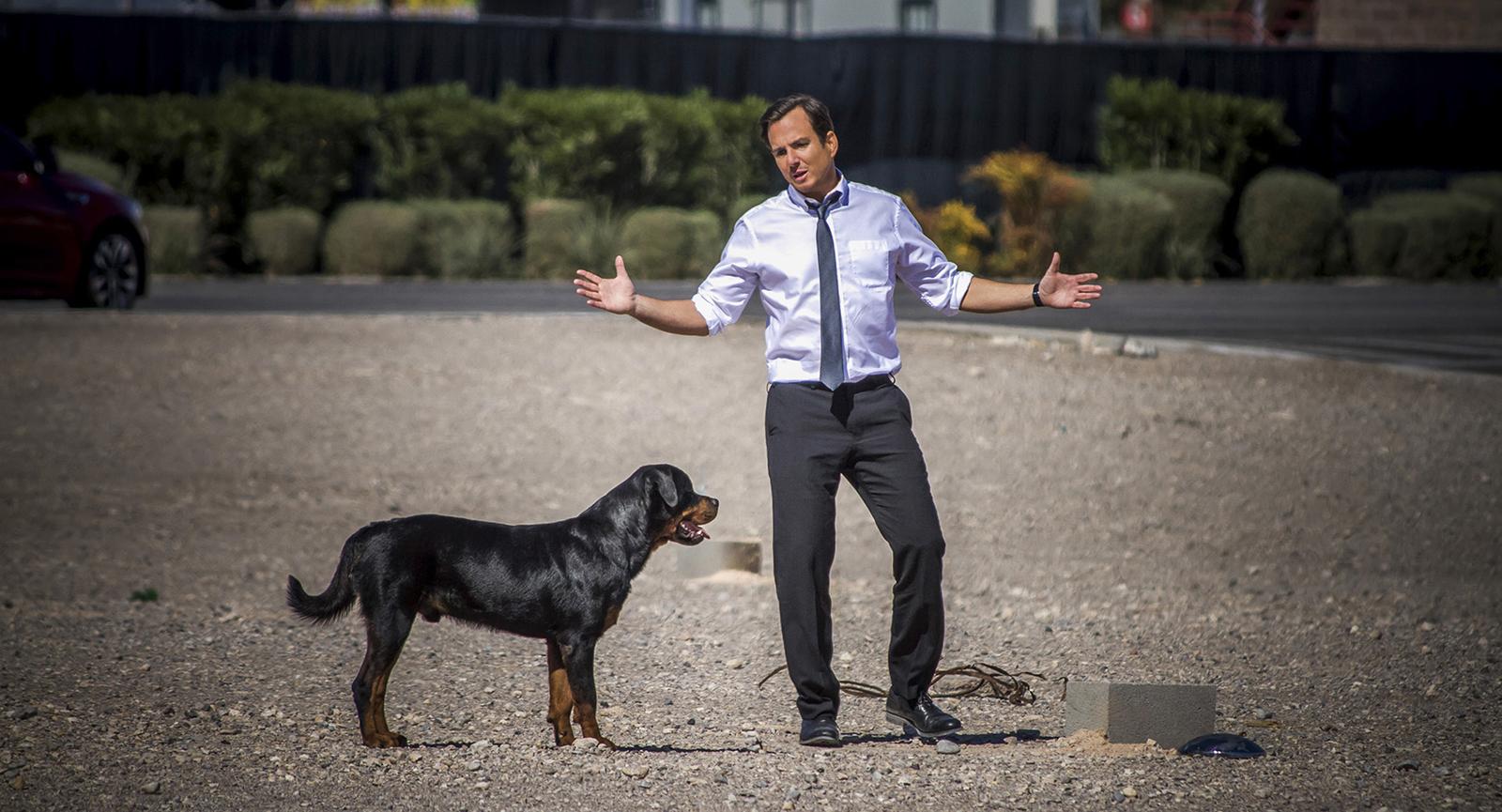 Superagente canino_imagen1