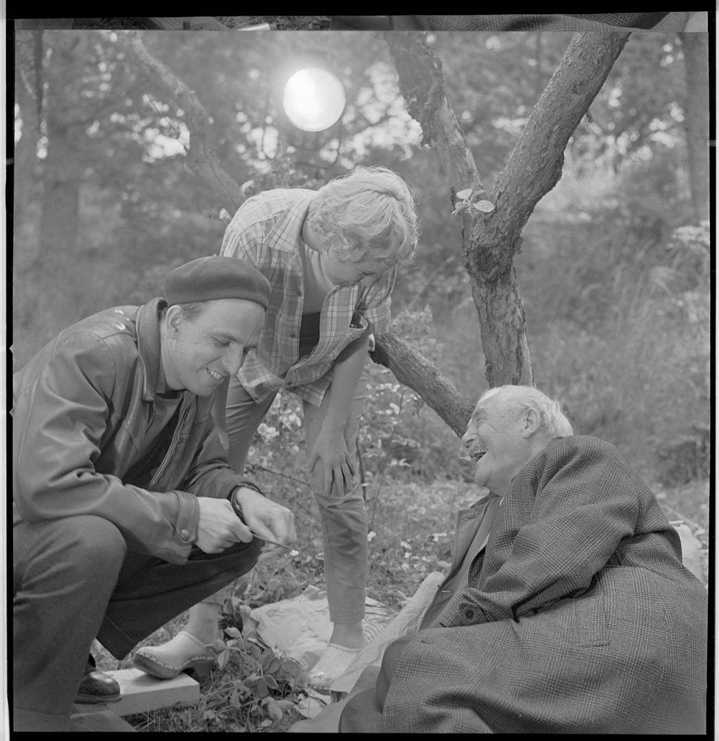 Bergman, su gran año_imagen2