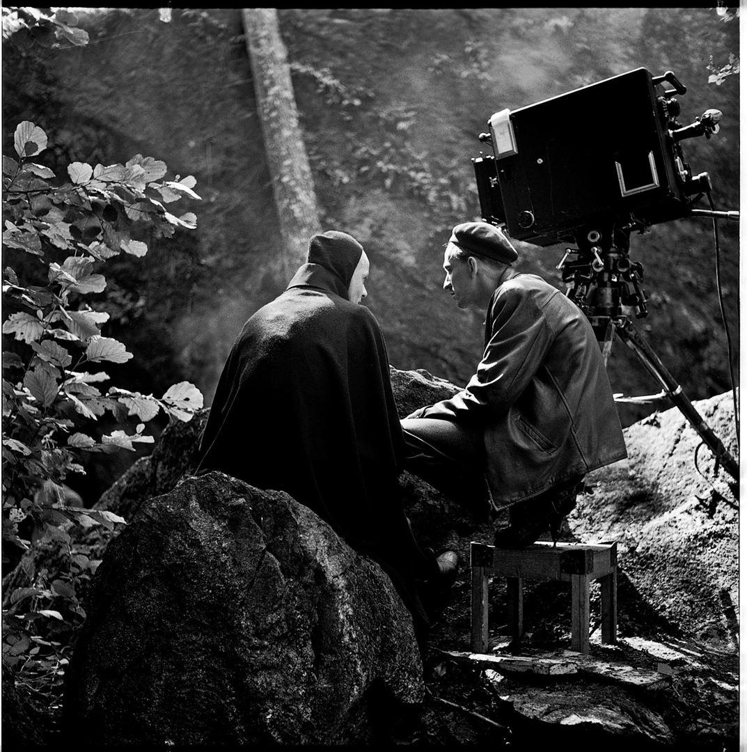Bergman, su gran año_imagen3